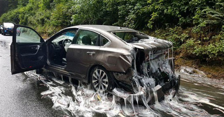 Photos Of The Most Bizarre Accident Cops Have Ever Seen Are Quickly Sweeping The Internet