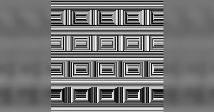 Can You Correctly Guess The Number Of Circles In Photo Puzzle That's Going Viral?