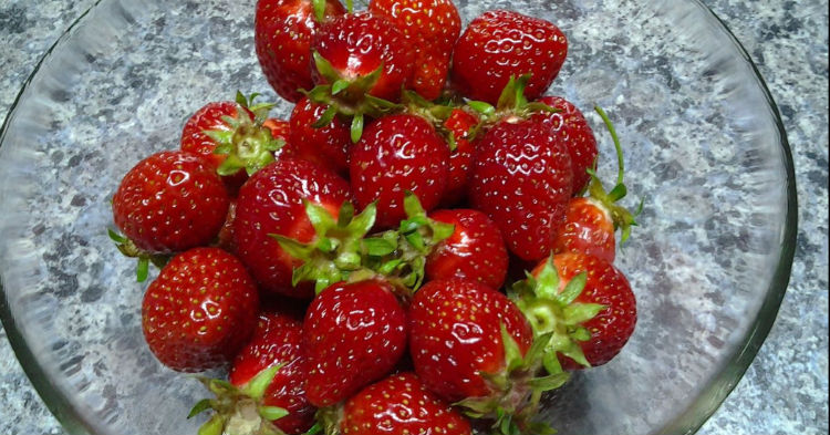 Farmer Shares Trick To Keeping Strawberries Fresh In The Fridge For Weeks