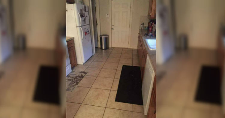 Once You Spot The Dog In The Photo You'll Wonder How It Took You So Long To Find