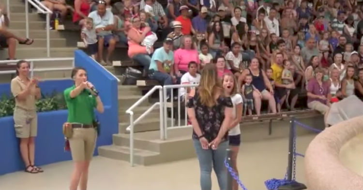 She Thought She Was Randomly Picked From The Crowd, Then She Hears Gasps And Turns To See Why