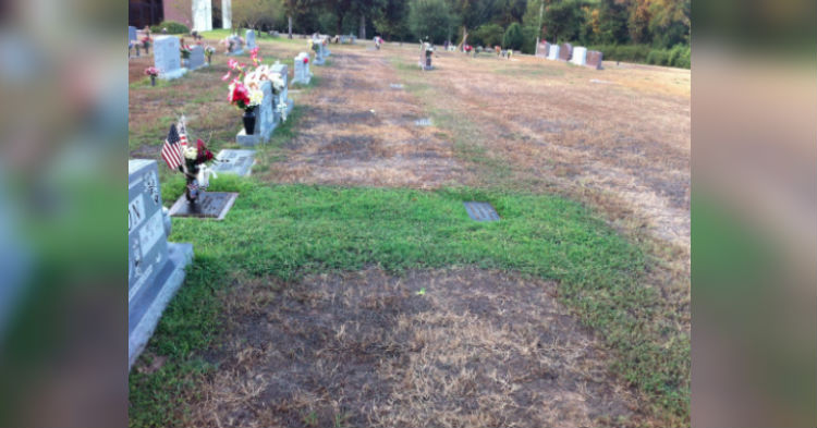 Family Shocked That Grass On Son's Grave Was Still Green, Breakdown When They Realize Why