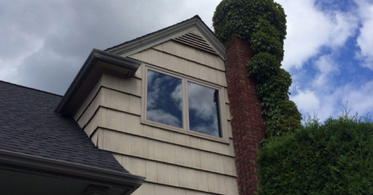 Man Catches A Strange Woman Living In His Attic, Then Things Get Even Weirder