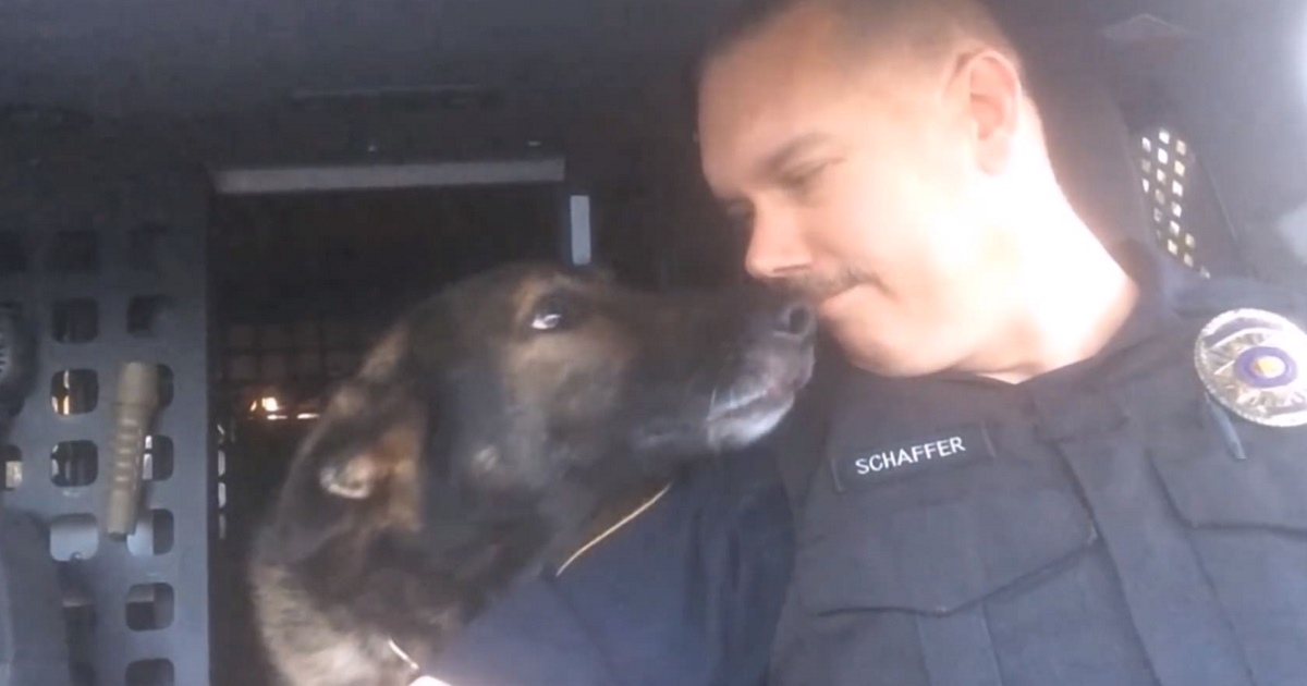 This Officer's Tribute To His K-9 Partner On The Day Of His Retirement Is Going Viral